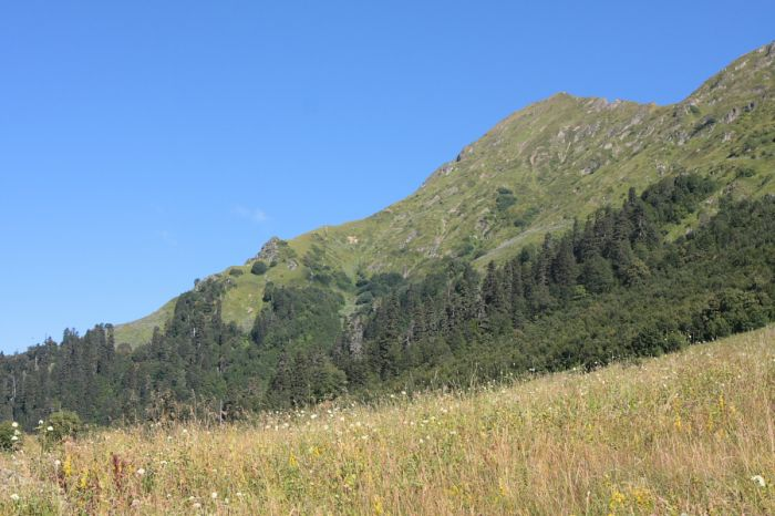 Южный отрог хребта Аибга