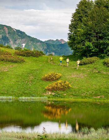 Красная Поляна Alpindustria Trail