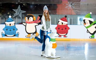 Ледовый каток «Пингвиния»