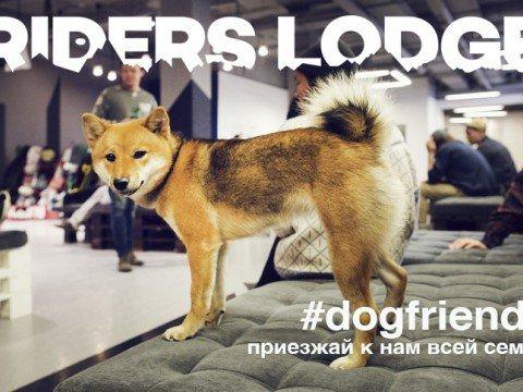 Возможно проживание с животными в отеле Riders Lodge, Роза Хутор, Красная Поляна, Сочи