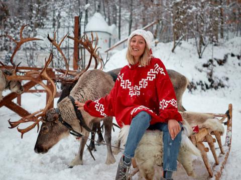 Северные олени в Красной Поляне