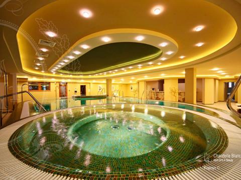 Гидротерапевтический SPA-центр Гранд Отель Поляна