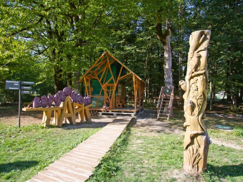 Веревочный парк в экоцентре Лаура