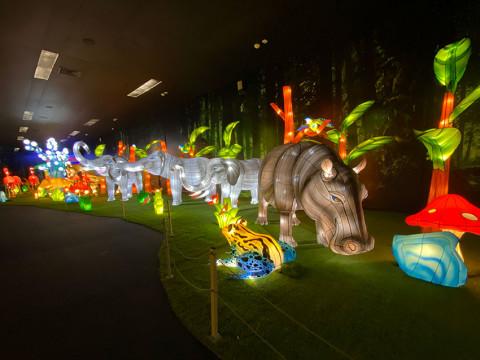 Парк иллюминаций Вау парк в Красной Поляне