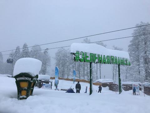 Парк Зеленая планета зимой