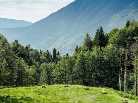 автокемпинг в горах Красной Поляны