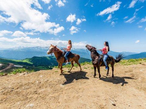 Конные прогулки в Красной Поляне на Роза Хутор