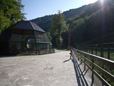 Территория комплекса и вольер для птиц